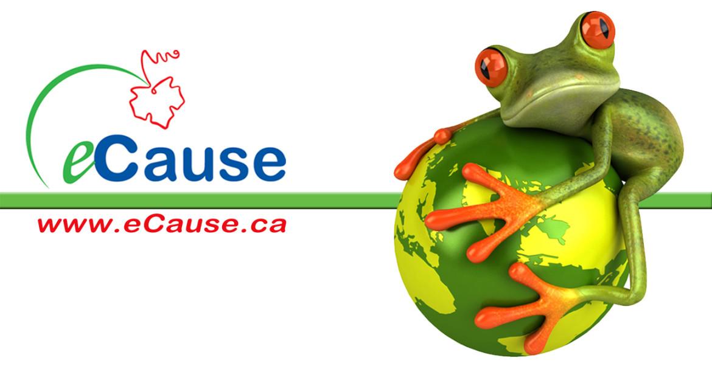 Logo Frog Bar website