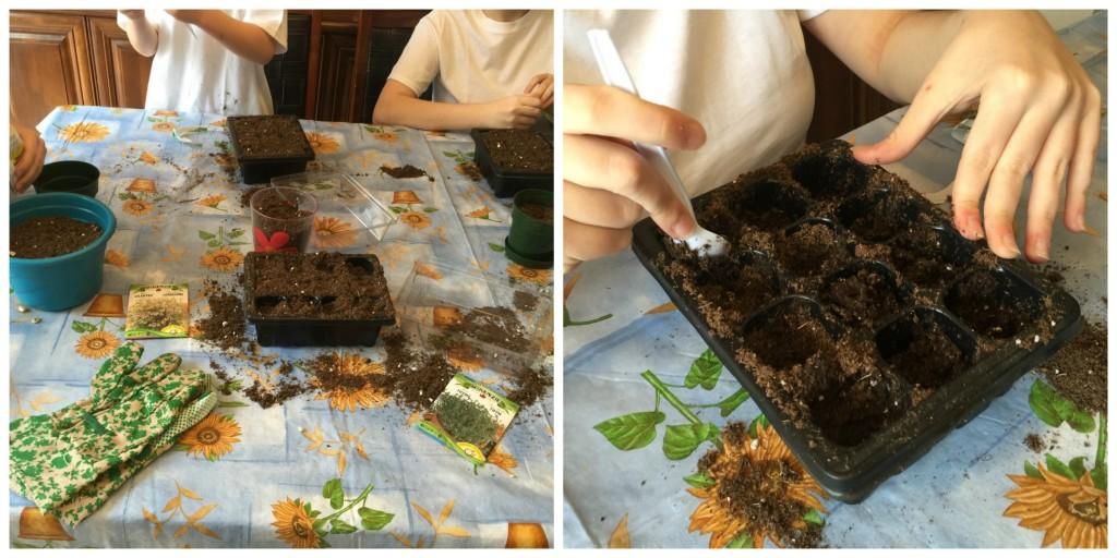 Seed Starting 1