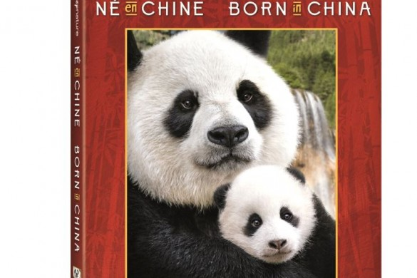 Born_In_China_Print_Beauty_Shots_6.75_Blu-ray_Combo_Pack___Bilingual_RAP